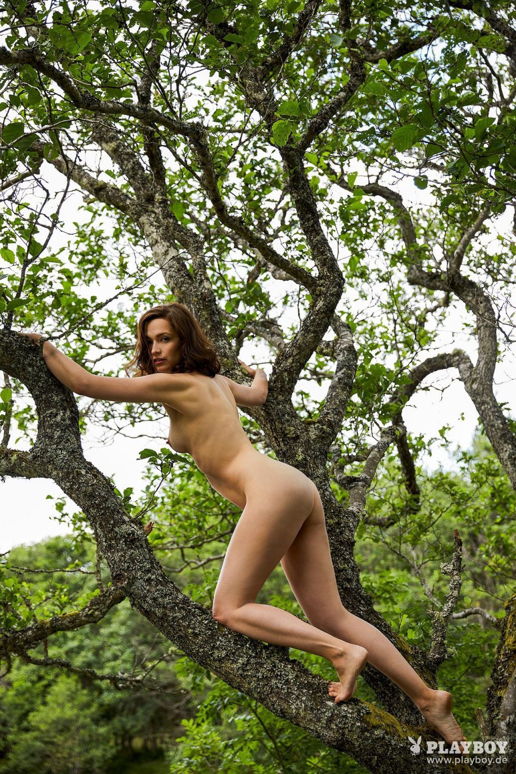 Nudist Brunette Uta Kargel Decides to Climb a Tree