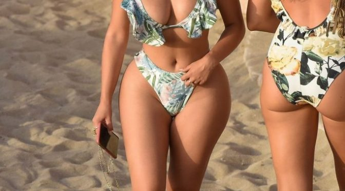 Instagram Celebrity Demi Rose Shows Her Ginormous Butt in Slutty Swimwear